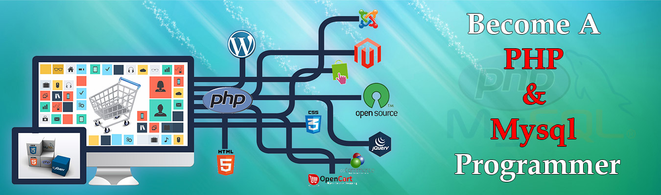 PHP and MySQL Programming Training Courses in Delhi